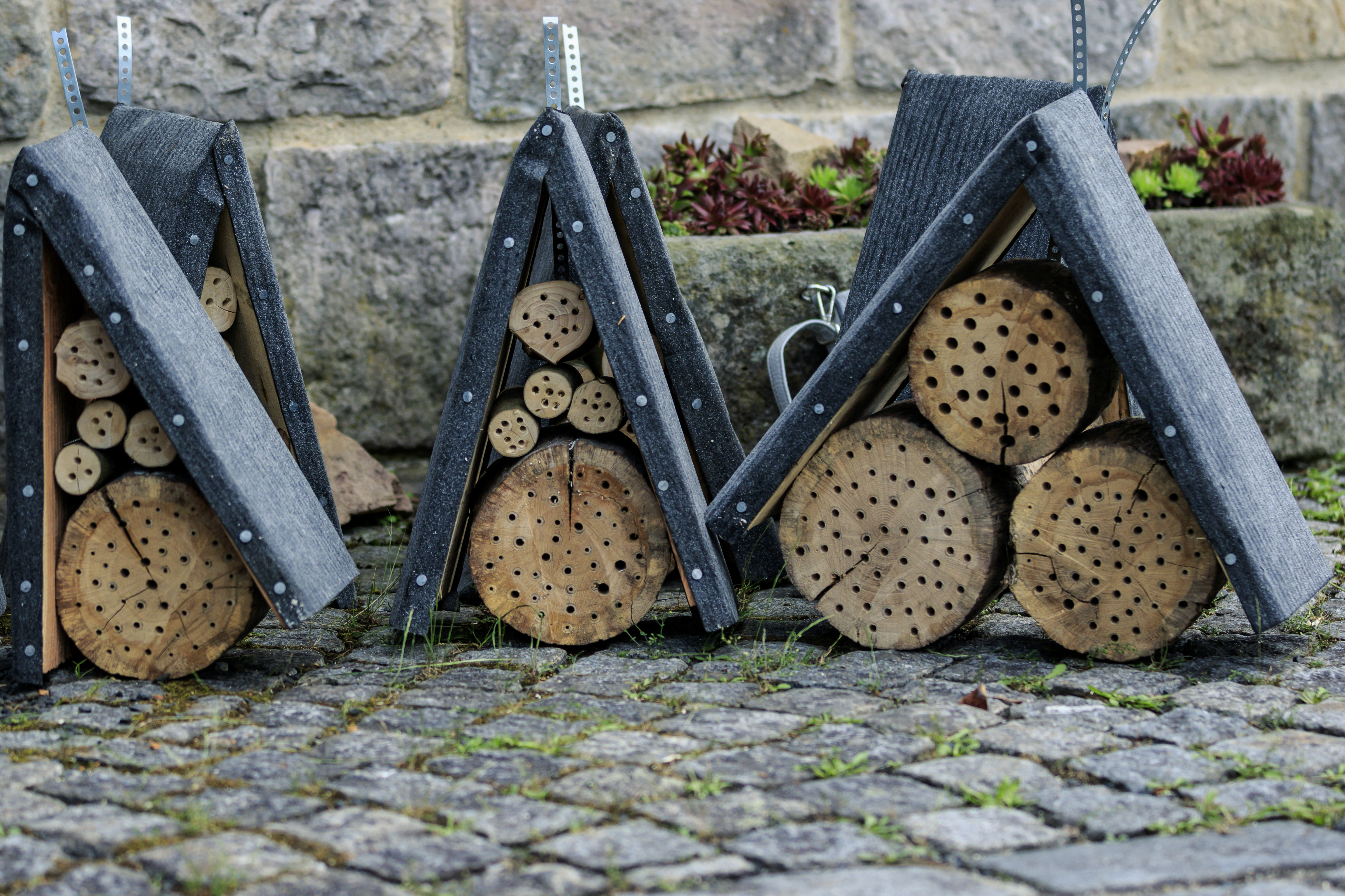 Insektenhotels Foto: Sven Schulze